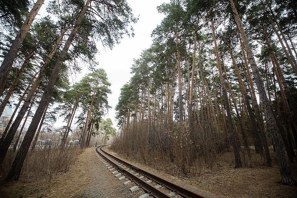 В Челябинске жители поселка Мелькомбинат требуют у авторов Генплана не строить новую дорогу