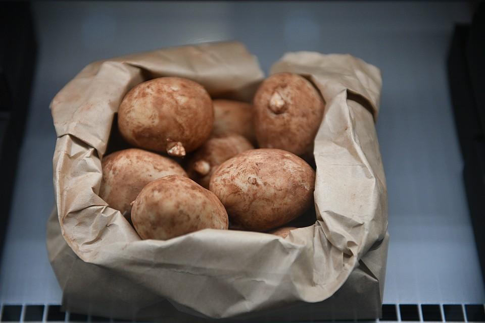 Трое взрослых и подросток насмерть отравились парами гнилой картошки в Челябинской области