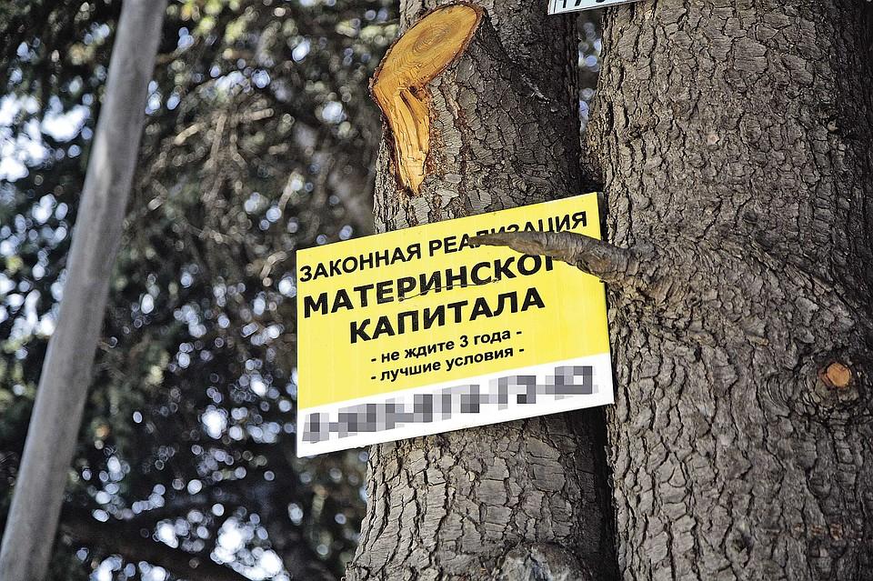 Материнский обнал: Как жуликам удается воровать деньги, которые государство выделяет на поддержку детей